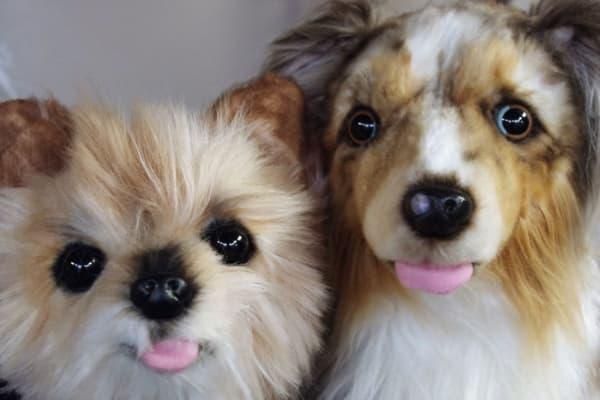 Cuddle Puppy Stuffed Animal